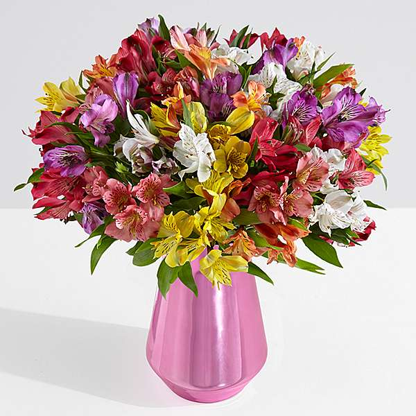 multi colored 100 peruvian lillies with clear vase