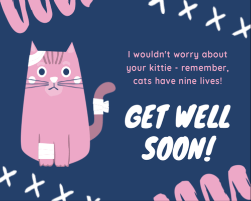 get well message for a cat kittie nine lives