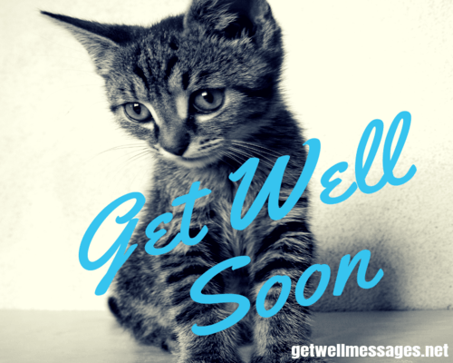 get well soon message for a cat cute